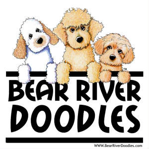Bear River Doodles